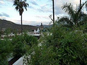 Casita roof gardens