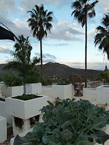 Casita-roof1